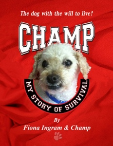 champ-cover-final