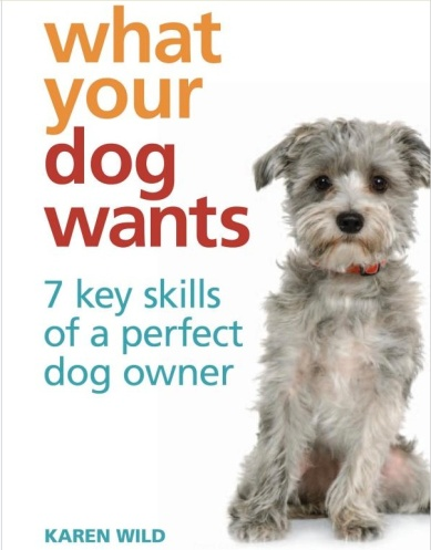 what your dog wants